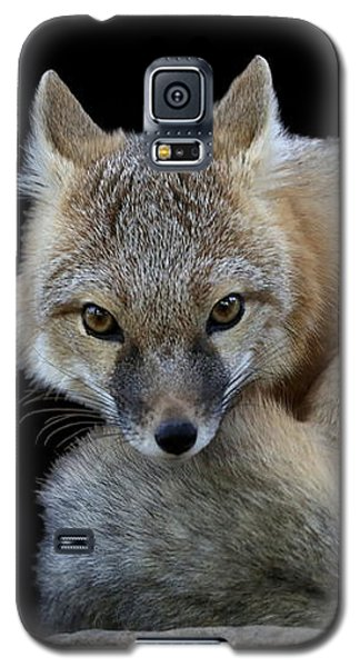 Eyes Of The Fox Galaxy S5 Case