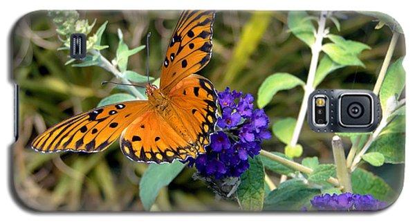 Eyes On A Butterfly Galaxy S5 Case