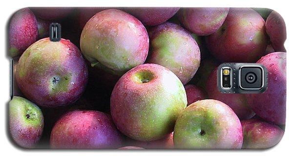 Fabulous Fall Fruits Galaxy S5 Case