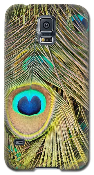 Galaxy S5 Case featuring the photograph Fabulous Feathers by Margaret Bobb