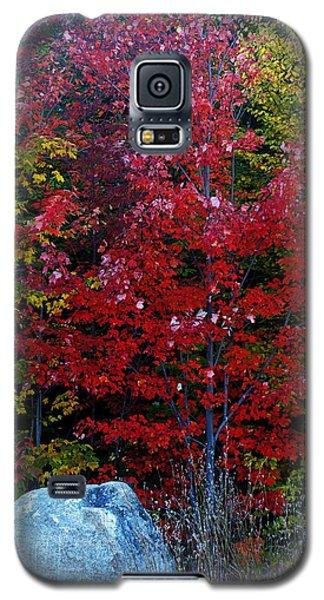 Fabulous Foliage Galaxy S5 Case