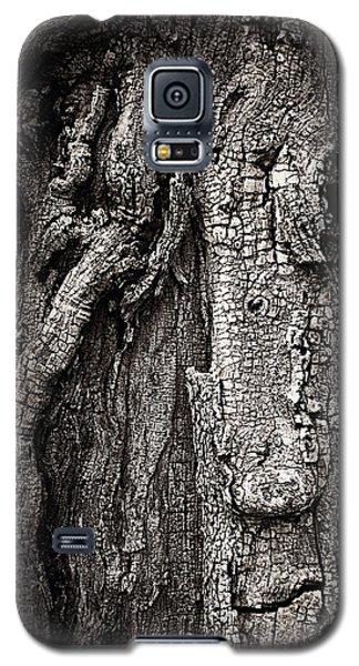 Face In A Tree Galaxy S5 Case by JoAnn Lense