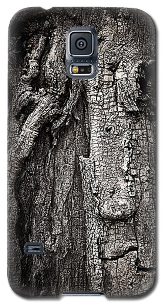 Galaxy S5 Case featuring the photograph Face In A Tree by JoAnn Lense