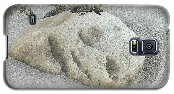 Face In The Sand At Baird Glacier Outwash Galaxy S5 Case