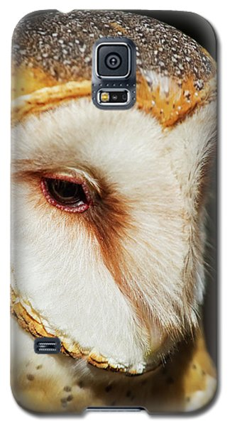 Galaxy S5 Case featuring the photograph Face Of Athena by Arthur Dodd