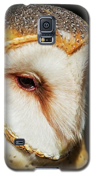 Face Of Athena Galaxy S5 Case