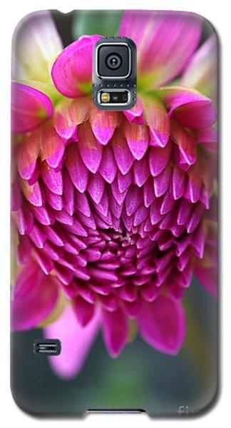 Face Of Dahlia Galaxy S5 Case