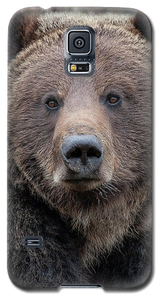 Face Of The Grizzly Galaxy S5 Case