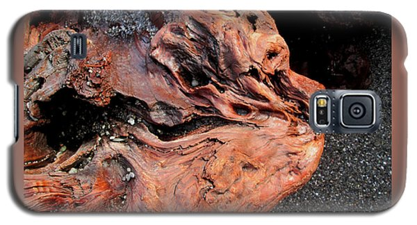 Faces In The Wood #5 - Lion King Galaxy S5 Case