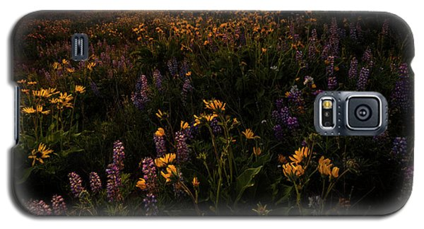Galaxy S5 Case featuring the photograph Facing The Day by Mike Lang