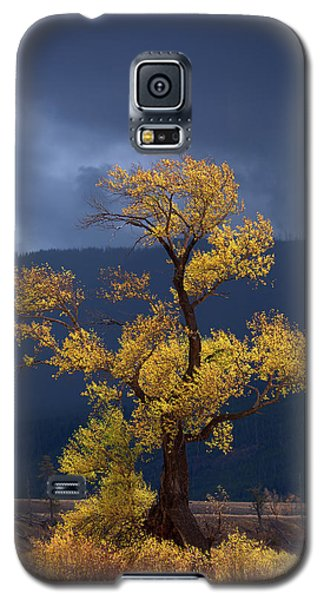 Facing The Storm Galaxy S5 Case