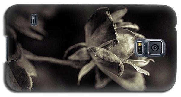 Faded Beauty Galaxy S5 Case