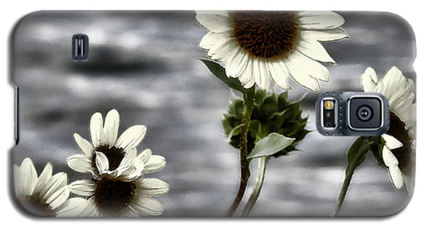 Galaxy S5 Case featuring the photograph Fading Sunflowers by Susan Kinney