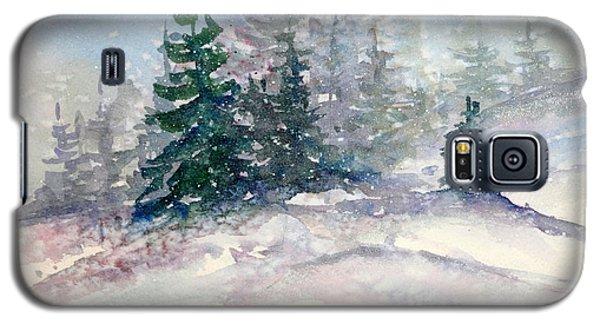 Fading Winter Light Galaxy S5 Case