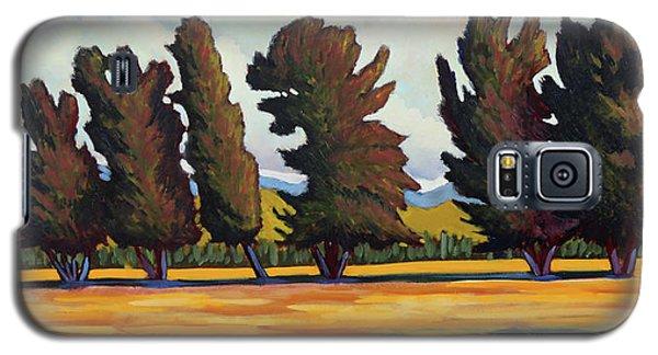 Fairfield Tree Row Galaxy S5 Case