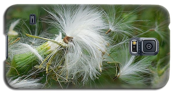 Fairy Flower Galaxy S5 Case
