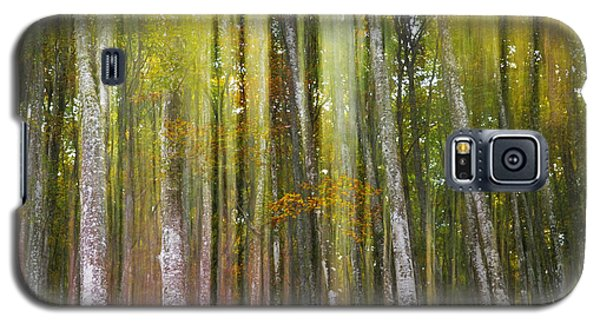 Galaxy S5 Case featuring the photograph Fairy Forest I by Yuri Santin