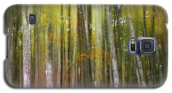 Fairy Forest I Galaxy S5 Case