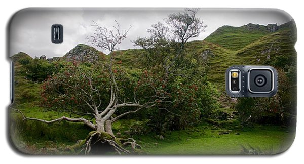 Fairy Glen Scotland Galaxy S5 Case