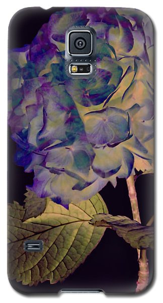 Fairy Hydrangea Galaxy S5 Case by Susan Maxwell Schmidt