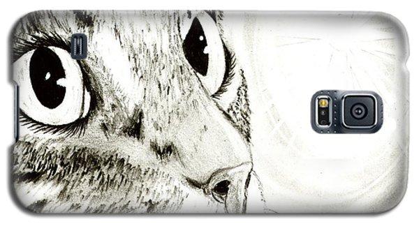 Fairy Light Tabby Cat Drawing Galaxy S5 Case
