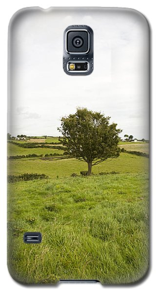 Fairy Tree In Ireland Galaxy S5 Case by Ian Middleton