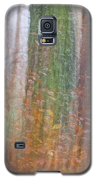 Fairy Tree Galaxy S5 Case