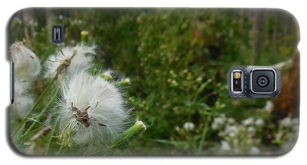 Fairy Woods Galaxy S5 Case