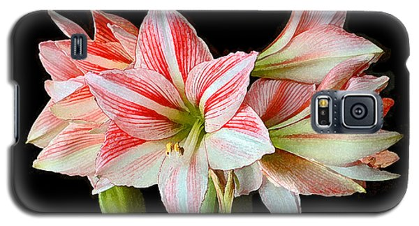 Fairyland Amaryllis  Galaxy S5 Case