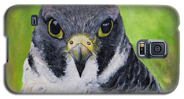 Falcon Galaxy S5 Case