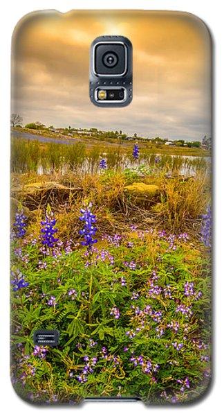 Zapata Falcon Lake 2 Galaxy S5 Case by Leticia Latocki