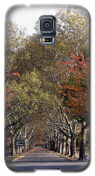 Fall At Corona Park Galaxy S5 Case