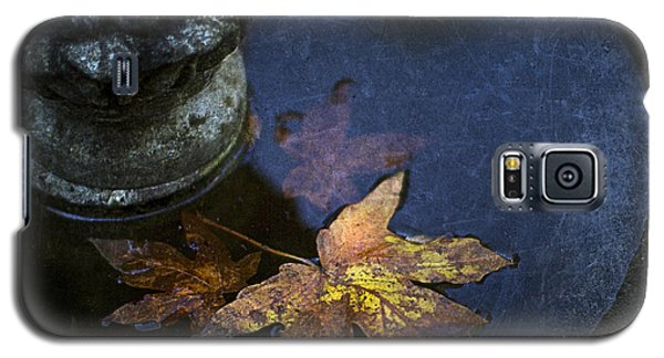Fall At The Fountain Galaxy S5 Case