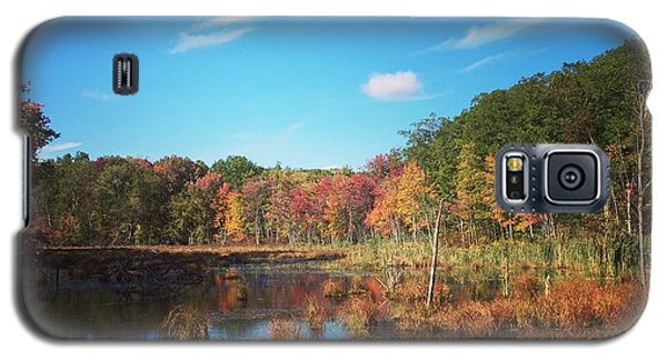 Fall At The Pond Galaxy S5 Case