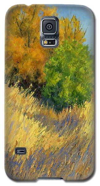 Fall Begins Galaxy S5 Case