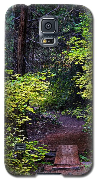Metolius River Trail Fall Bridge Galaxy S5 Case
