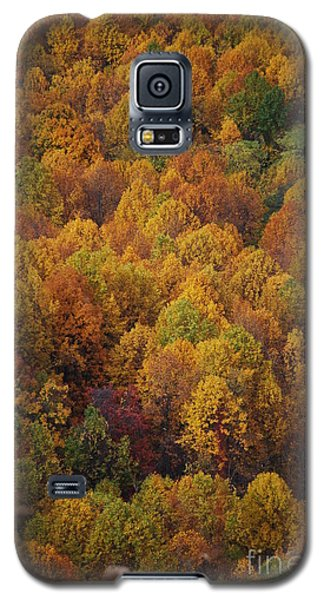Galaxy S5 Case featuring the photograph Fall Cluster by Eric Liller