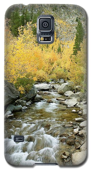 Galaxy S5 Case featuring the photograph Fall Colors And Rushing Stream - Eastern Sierra California by Ram Vasudev