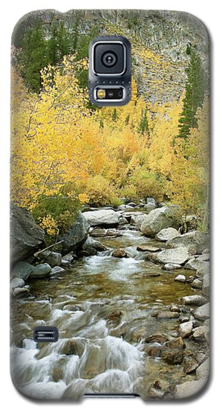 Fall Colors And Rushing Stream - Eastern Sierra California Galaxy S5 Case