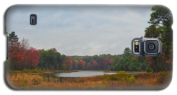 Fall Colors At Gladwin 4459 Galaxy S5 Case