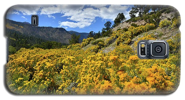 Fall Colors Come To Mt. Charleston Galaxy S5 Case