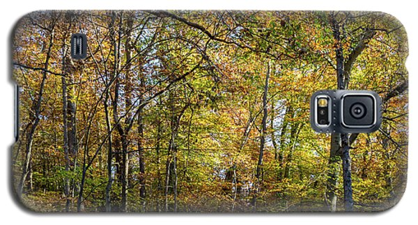 Fall Colors Of Rock Creek Park Galaxy S5 Case