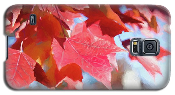 Fall Colors Oil Galaxy S5 Case