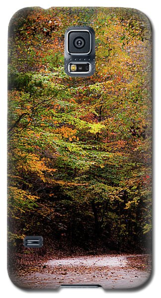 Galaxy S5 Case featuring the photograph Fall Colors On The Trail by Shelby Young