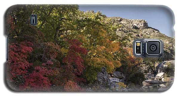 Galaxy S5 Case featuring the photograph Fall Foliage In The Guadalupes by Melany Sarafis