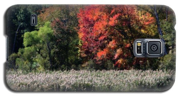 Galaxy S5 Case featuring the photograph Fall Foliage Marsh by Smilin Eyes  Treasures