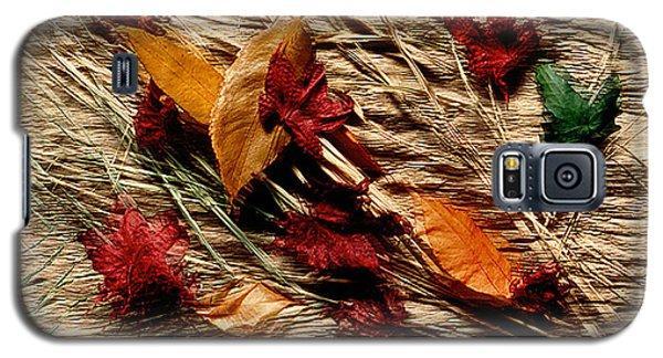 Fall Foliage Still Life Galaxy S5 Case
