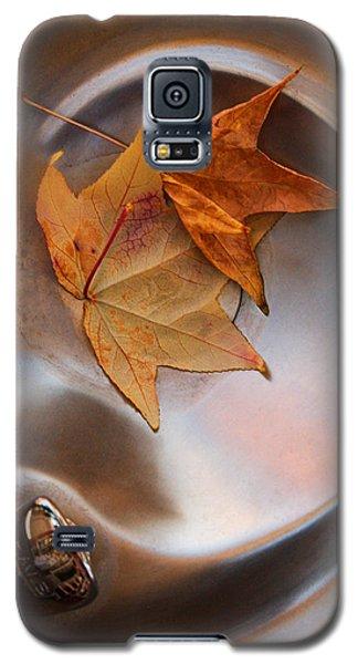 Fall Fountain Galaxy S5 Case