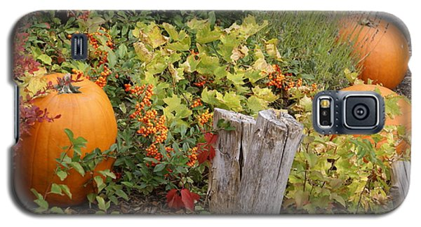 Galaxy S5 Case featuring the photograph Fall Garden by Cynthia Powell