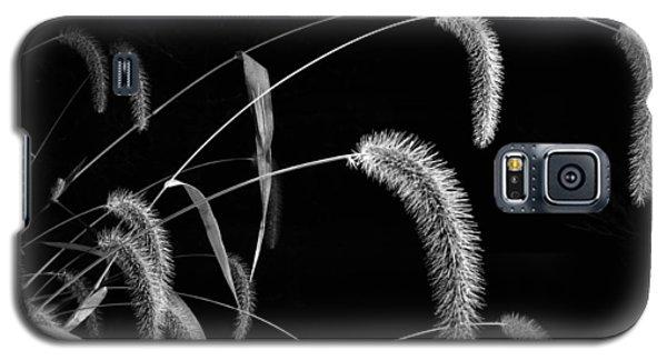 Fall Grass 3 Galaxy S5 Case